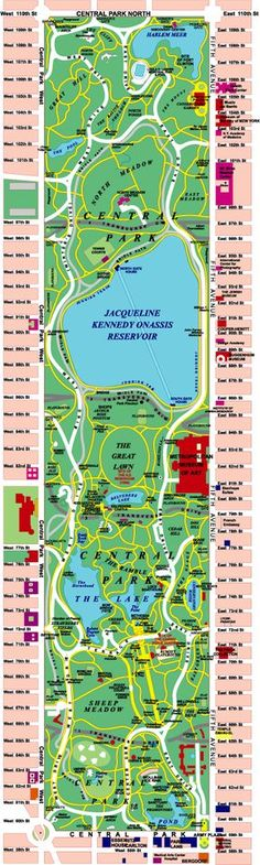 Central Park Map... Zoo, restaurants, bikes, alice in wonderland statue. 58 miles of pedestrian walks, 6.5 miles of roads and 4.5 miles of bridle paths were constructed. The Metropolitan Museum of Art was built on the edge of the park on 5th Ave. between 80th and 84th streets.