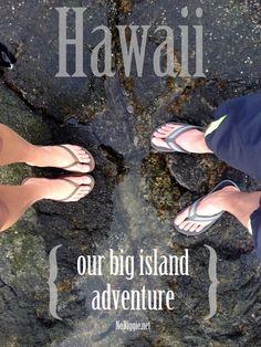 our big island Hawaiian adventure - NoBiggie.net