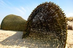willow tunnel ('Sandworm' by Finnish environmental artist and architect Marco Casagrande; photos by Nikita Wu)