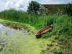 Cursos Intensivos de fotografía en el Delta del Ebro, Photolocus actividades de fotografía