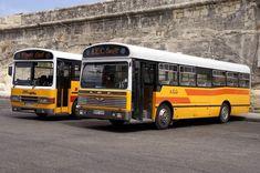 Malta Bus, Busses, Public Transport, Maltese, Transportation, Old Things, Trucks, Cider Vinegar, Apple Cider
