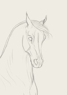 How to draw horse faces - horse faces draw - new - horse .How to draw horse faces - horse faces draw - new - horse faces draw - Create zoo animal crafts and activities, Horse Face Drawing, Horse Drawings, Cool Art Drawings, Pencil Art Drawings, Art Drawings Sketches, Animal Drawings, Drawing Drawing, Disney Drawings, Pictures For Drawing