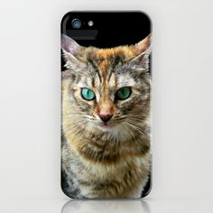 Cat with Turquoise Eyes iPhone & iPod Case by Bluedarkat Lem - $35.00