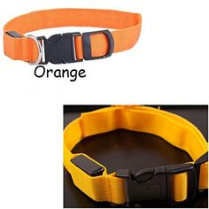 1Pc Powerful Popular LED Pet Collar Size M Necklace Dog Assorted Adjustable Color Orange -- Want additional info? Click on the image.