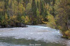 #Alaska #FallColors #ForSale #photography #nature #photo