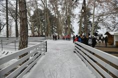 Korcsolyapálya Siófok 2019/2020. Siófoki Jégkikötő - korcsolyapálya a hajóállomáson Snow, Outdoor, Outdoors, Outdoor Games, The Great Outdoors, Eyes, Let It Snow