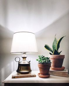 Cool lamp. And of course succulents.