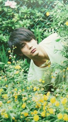 Taishi Nakagawa Japanese Film, Japanese Drama, Japanese Boy, Japanese Models, Japanese Artists, Cute Asian Guys, Hot Asian Men, Pretty Asian, Asian Boys