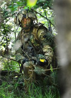 A soldier from The 1st Battalion The Princess of Wales's Royal Regiment (1PWRR) on a woodland patrol during Exercise Bavarian Charger.