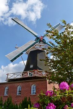 Wunderschön die Mühle in Idafehn - hier kann sogar geheiratet werden!