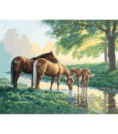 Paint By Number Kit 20''X16''-Horses By A Stream