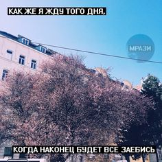 Строки... My Life My Rules, Phone Backgrounds, In My Feelings, Real Life, It Hurts, Mood, Motivation, Sayings, Quotes