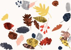 claire softley leaves illustration