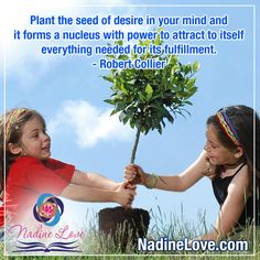 """""""Plant the seed of desire in your mind and it forms a nucleus with power to attract to itself everything needed for its fulfillment."""" - Robert Collier  www.NadineLove.com Fulfillment Quotes, Attraction, Everything, Mindfulness, Plants, Plant, Consciousness, Planets"""