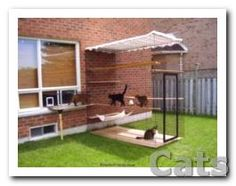 Outside Kitty Enclosures! For your inside #cats to have a fun.