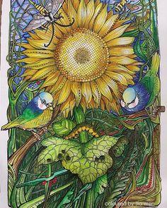 #adultcoloringbook #manicbotanic #derwentinktense #coloringbook #zifflin #zifflinscoloringbook #irinavinnik #Zifflin