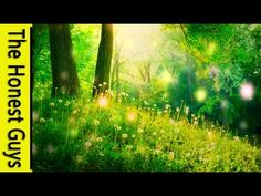 20 min GUIDED MEDITATION - A Fairy Blessing & Healing Meditation (Remastered) - YouTube