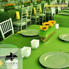 Your vision, is what drives the event & wedding design process, dedicated to your successful event. Muskoka, Toronto & World Wide http://www.eventsfromthebox.com/#!imaginecreativeeventconceptshome/r1b9t