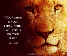 """""""Your mind is your prison when you focus on your fear."""" / -tim fargo / MindDaddy.com"""