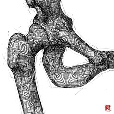 -Hip Bone- from Human Body Study Series by Body Study, Hip Bones, Human Body, Anastasia, Anatomy, Spiderman, Body Art, Contemporary Art, Skull