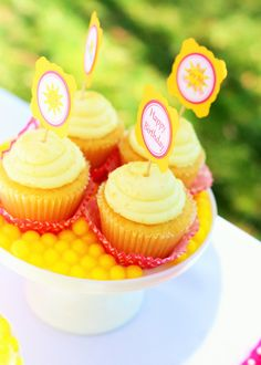 sunshine and lemonade party cupcakes with toppers Party Cupcakes, Mini Cupcakes, 2nd Birthday, Birthday Parties, Pink Lemonade Party, Sunshine, Desserts, Food, Party