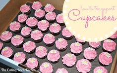 Cupcake Carrier Place Them In Plastic Storage Box Use