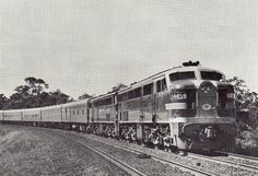 Classic NSW Southern Aurora Photo / New South Wales / Forums / Railpage
