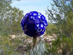 The Amazing Art of Dale Chihuly in the Desert Botanical Garden in Phoenix | Impact Lab