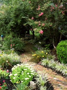 Our Favorite DIY Gardens From Rate My Space | DIY Landscaping | Landscape Design & Ideas, Plants, Lawn Care | DIY