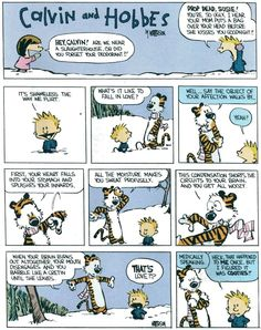 Love Definition, Calvin & Hobbes...that pretty much sums it up.
