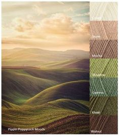 Yarn Color Combinations, Color Schemes Colour Palettes, Beautiful Color Combinations, Color Collage, Color Harmony, Color Palate, Color Theory, Color Inspiration, Decoration