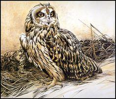 Обаятельные Совы в иллюстрациях и картинах художников-анималистов - Ярмарка Мастеров - ручная работа, handmade