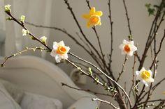 Virka påskliljor och narcisser - DIY Sweden Artificial Succulents, Planting Succulents, Crochet Home, Love Crochet, Rose Gold Balloons, Monster Toys, Easter Crochet, Happy Spring, Balloon Arch