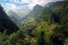 Madeira Island By Gerry Sluiter
