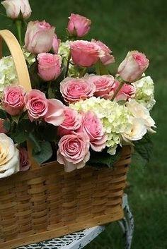 flowers Flowers Garden Love