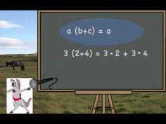 Week 23- Math- the Distributive Law