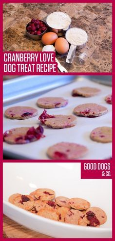 Cranberries are a seasonal treat for pups! We love this cranberry dog treat recipe from Good Dogs & Co.