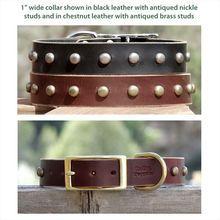 Handmade Leather Dog Collar 1 inch