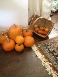 My lazy garden produced a LOT of pumpkins.  Yours can too! Its EASY!