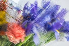 Floral Abstract in my Photo Artistry collection