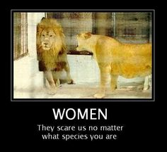 women. they scare us no matter what species you are