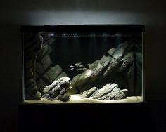 An amazing DIY styrofoam background and rocks