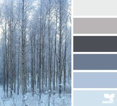 forest tones from Design Seeds. we're adding grey to the rest of the house, so our current blues should work Design Seeds, Colour Pallete, Colour Schemes, Color Palettes, Winter Colour Palette, Color Harmony, Deco Design, Wood Design, Winter Colors