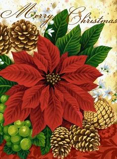 Poinsettia And Pinecones By Elena Vladykina Ruth Levison Design Poinsettia Cards, Christmas Poinsettia, Christmas Scenes, Christmas Tag, Christmas Pictures, All Things Christmas, Christmas Crafts, Christmas Decorations, Christmas Graphics
