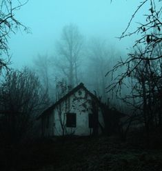 Isolated haunted house in the middle of the forest. I don't know... I find the solitude of these places especially beautiful.