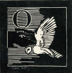 O is for Owl, Linocut by Stephen Duffy Duffy, Paintings For Sale, Line Drawing, Art For Sale, Monochrome, Arts And Crafts, Fancy, Gallery, Drawings
