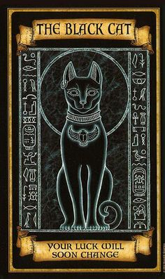 What Are Tarot Cards? Made up of no less than seventy-eight cards, each deck of Tarot cards are all the same. Tarot cards come in all sizes with all types Fortune Cards, Fortune Telling Cards, Bastet, Arte Black, Egyptian Art, Egyptian Goddess, Oracle Cards, Book Of Shadows, Tarot Decks