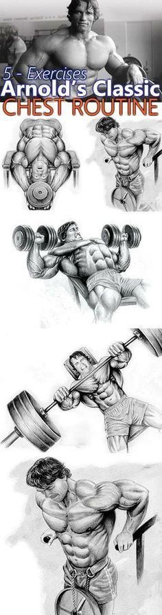 Arnold's Classic 4 Exercise Chest Workout. When it comes to building a massive chest, there's no better authority than the seven-time Mr. Arnold worked hard and heavy to build his chest, training his chest three days a week Gym Workout Tips, Weight Training Workouts, Fitness Workouts, Dip Workout, Week Workout, Bodybuilding Training, Bodybuilding Workouts, Bodybuilding Motivation, Muscle Fitness