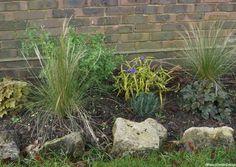 small border planting scheme for a front garden, ornamental grass, herbs, heuchera
