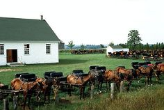 The first migration to Canada saw 2,000 Swiss Mennonites from Pennsylvania arrive in Upper Canada around 1776, during and after the American Revolution. In the 1870s, the russification policies of the Russian government caused 18,000 Dutch Mennonites to flee to North America, with roughly 7,000 choosing southern Manitoba on the promise of land, cultural autonomy and exemption from military service.